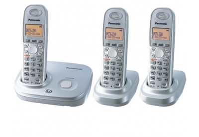 Panasonic - KX-TG6313S - Additional Cordless Handsets