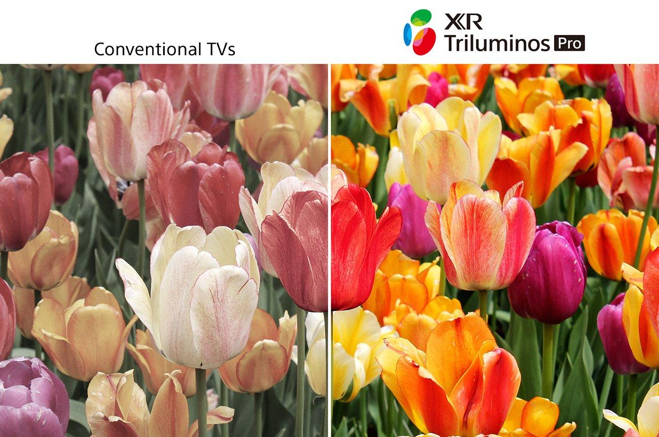 "Sony 85"" BRAVIA XR X95J Black 4K HDR LED TV - XR85X95J | Abt"