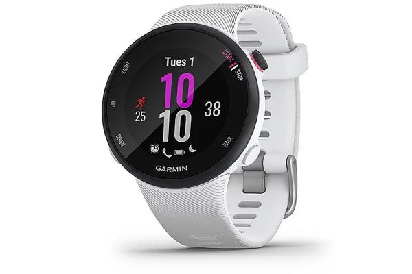 Large image of Garmin Forerunner 45S White Smartwatch - 010-02156-00