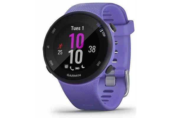 Large image of Garmin Forerunner 45S Iris Smartwatch - 010-02156-01