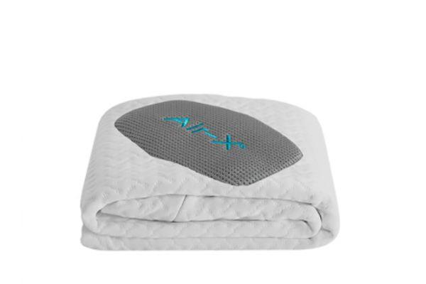 Large image of Bedgear Dri-Tec 5.0 King Pillow Protector - BGX03AWZK