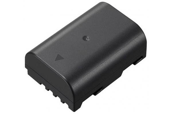 Large image of Panasonic Large Capacity Battery - DMW-BLF19