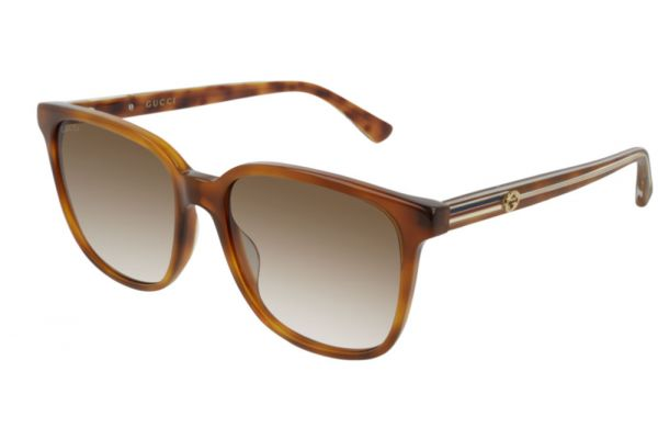 Large image of Gucci Havana Soft Square Frame Womens Sunglasses - GG0376S-004
