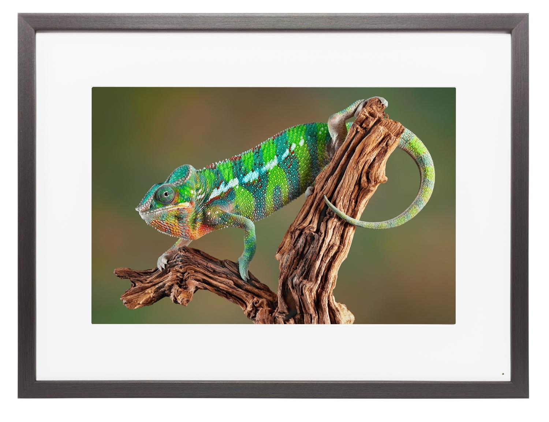 Memento smart frame 25 4k digital picture frame m25a023 large image 1 1 memento smart picture frames jeuxipadfo Gallery
