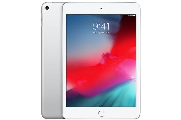Large image of Apple iPad mini 64GB Wi-Fi Silver (2019) - MUQX2LL/A