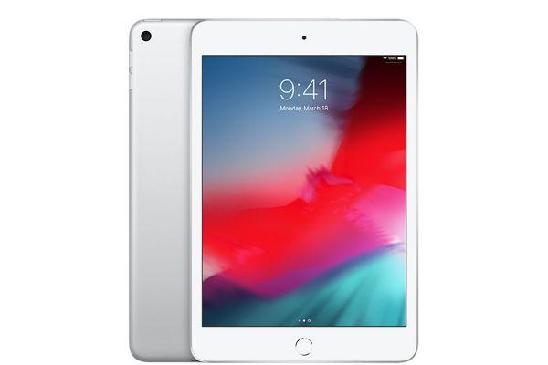 Large image of Apple iPad mini 256GB Wi-Fi Silver (2019) - MUU52LL/A