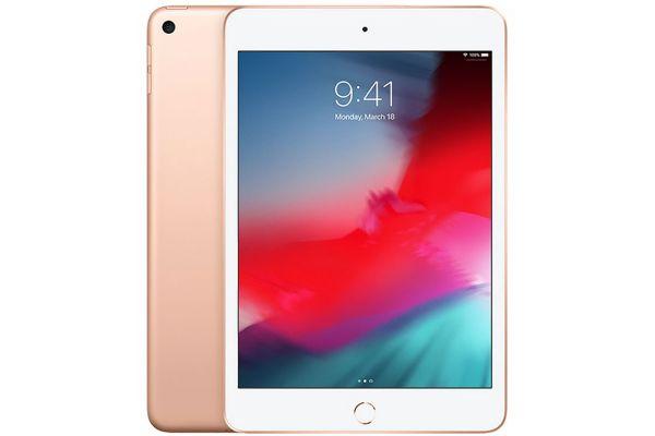 Large image of Apple iPad mini 256GB Wi-Fi Gold (2019) - MUU62LL/A