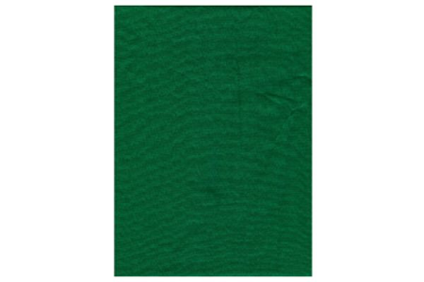 Large image of ProMaster 10x12 Foot Chroma Green Backdrop - PRO1884