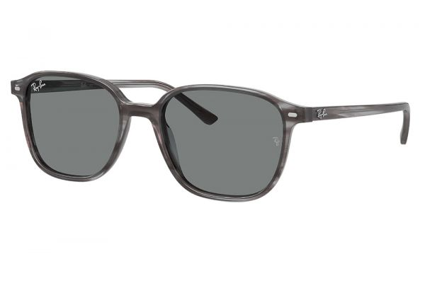 Large image of Ray-Ban Square Leonard Dark Grey Classic Sunglasses - RB21931314B151
