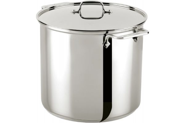 All-Clad Stainless Steel 16 Qt Stock Pot With Lid - E9076474