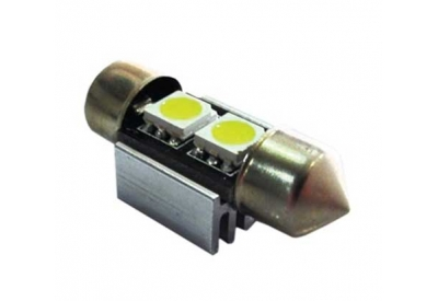Race Sport - RS31MM5050CANW - LED Lighting
