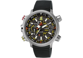 Citizen - BN5030-06E - Mens Watches