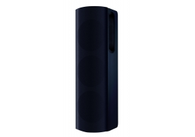 Bowers & Wilkins - CT8DS - Floor Standing Speakers