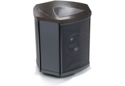 MartinLogan - DPIBLBAD - Subwoofer Speakers