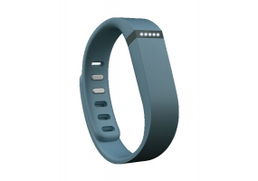 Fitbit - FB401SL - Heart and Fitness Monitors