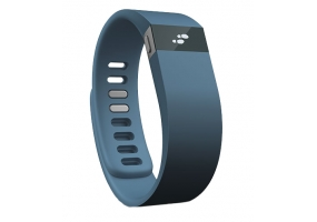 Fitbit - FB402SL - Heart and Fitness Monitors