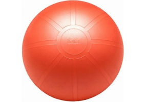 GoFit - GF-55BRBALL - Workout Accessories