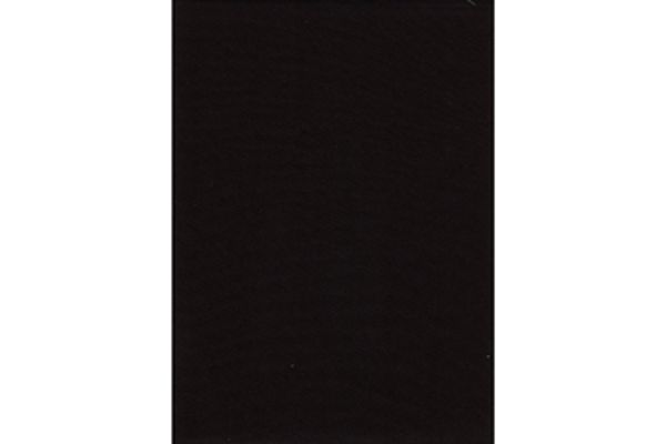 Large image of ProMaster Black Solid Backdrop 10'x12' - PRO1856