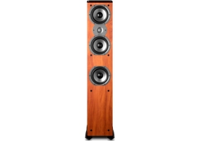 Polk Audio - TSI400C - Floor Standing Speakers