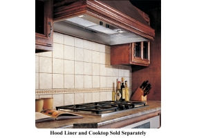 Dacor - IVS2 - Custom Hood Ventilation