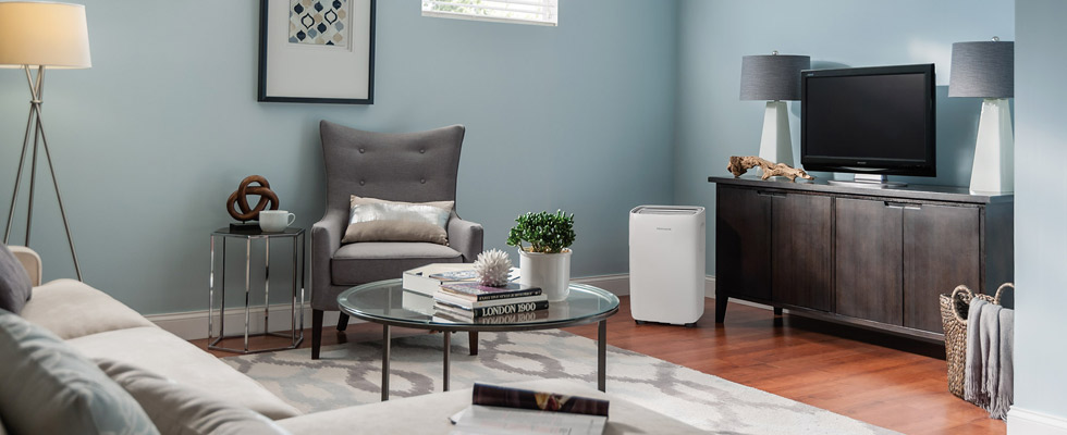 Frigidaire Dehumidifiers at Abt