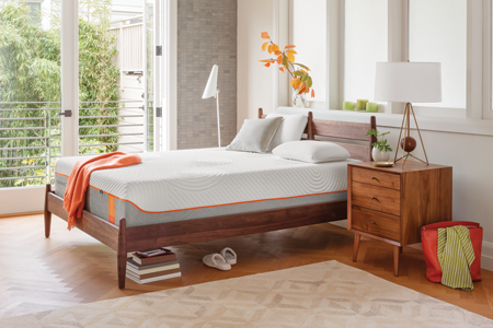 Tempur-Pedic Tempur-Contour Collection