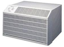 Friedrich Wallmaster Thru-the-Wall Air Conditioner