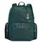 Tumi Voyageur Pine Calais Backpack