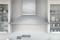 """Zephyr Siena Pro 42"""" Stainless Steel  Wall Hood"""