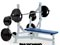 Life Fitness Hammer Strength Olympic Bench Weight Storage