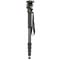 ProMaster Professional Monopod With Precision Head